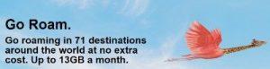 vodafone vs ee international roaming