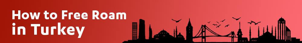 free-roam-in-turkey-review-banner
